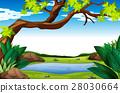 녹색, 배경, 연못 28030664