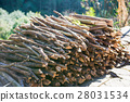 firewood after finish hew raw material for fuel 28031534