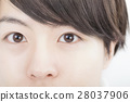 Men's beauty image eyes eyelash nose up staring 28037906