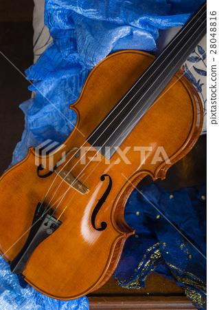 Violin Still life 28048816