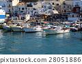 capri harbor, marina grande, marina 28051886