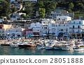 capri harbor, marina grande, boat 28051888