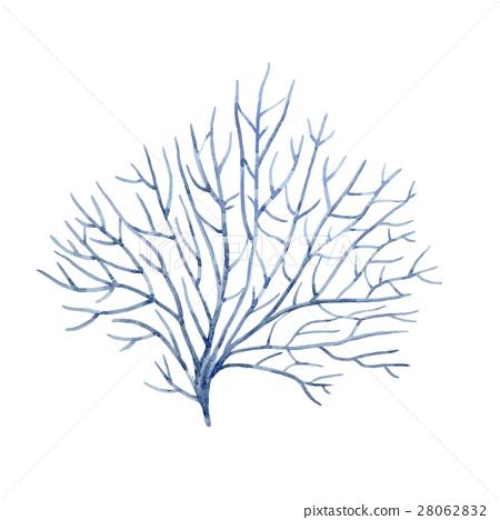 Watercolor vector underwater corals 28062832