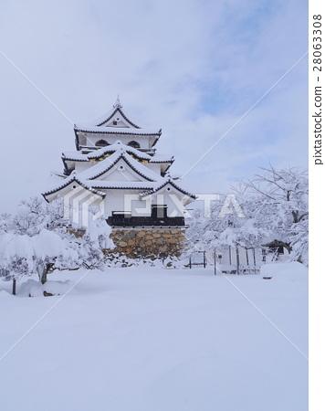 국보 히코 겨울 풍경 28063308