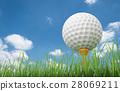 golf ball on tee 28069211