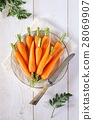 Fresh peeled carrots on green tops 28069907