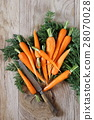 Fresh peeled carrots on green tops 28070028