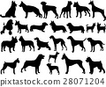 dogs silhouettes collection 28071204