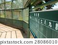 야구 그라운드 (14) 28086010