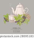 cup of elderberry tea and teapot 28095183