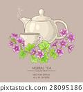malva tea illustration 28095186