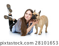 dog pet woman 28101653