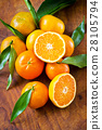 Mandarin oranges on table 28105794