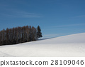 snow, scene, blue 28109046