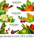 vegetable, banner, vector 28112081