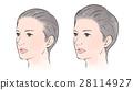 머리에 볼륨이없는 여성, 여성 28114927