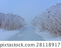 Comana lake in winter 28118917