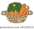 蔬菜 南瓜 洋蔥 28126523