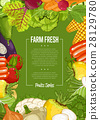 Fresh farm food banner with vegetable 28129780