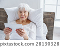senior, female, woman 28130328