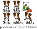 dog, dogs, animal 28138448