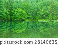 mishaka, pond, lagoon 28140635