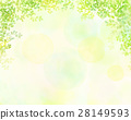 透过树叶的阳光 树叶 框架 28149593