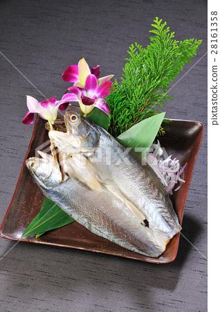 海鮮 魚 午魚一夜干 28161358