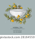 vector tea illustration 28164550