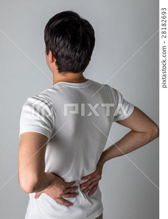 腰痛 背痛 下背疼痛 28182693