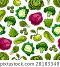 蔬菜 花紋 圖樣 28183349