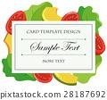 蔬菜 西红柿 番茄 28187692