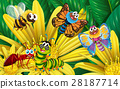 Different types of insects on yellow flower 28187714