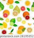 Fresh Citrus set. Bergamot, lemon, grapefruit 28195052