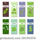 Essential oil labels collection. Basil, parsley 28195059
