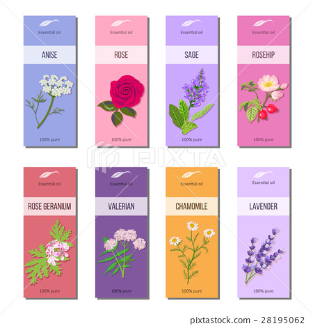 Essential oil labels collection. Rose, anise, sage 28195062