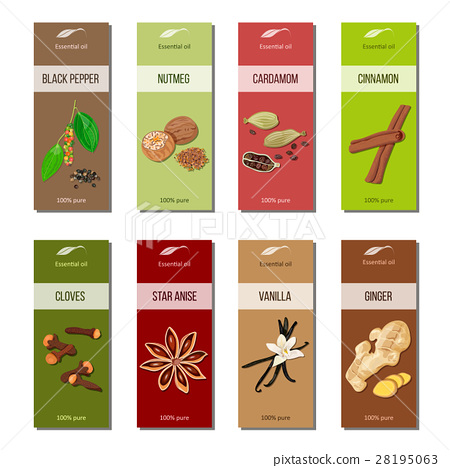 Essential oil labels collection. Nutmeg, cardamom 28195063