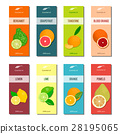 Essential oil labels collection. Bergamot, lemon 28195065