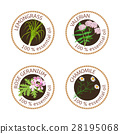芳香療法 設計元素 標籤 28195068