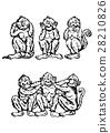 funny 3 monkeys, vector illustration, hand drawn 28210826