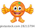 Orange Cartoon Fruit Mascot Character 28213794