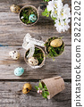 Colorful Easter quail eggs 28222202