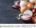 Variety of whole and sliced onion 28222279