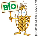 wheat cartoon bio  with signboard isolated 28222670