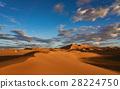 摩洛哥撒哈拉沙漠Merzouga沙丘 28224750