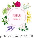 essential, oil, Rose 28228636