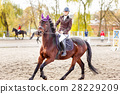 Young jockey girl riding horse on competition 28229209