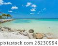 海滩 热带 岛 28230994