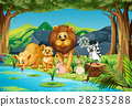 Wild animals living by the river 28235288