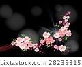 开花 樱花 粉色 28235315